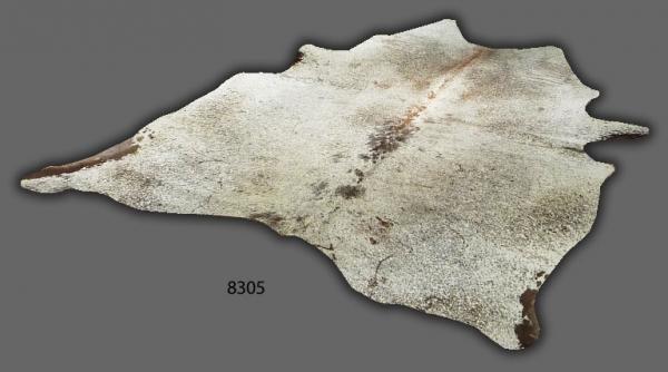 Cowhide, Exotic 8305