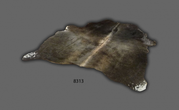 Cowhide, Gray speckled 8313