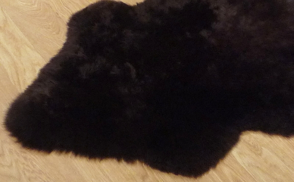 Long Wool Sheepskin 8598
