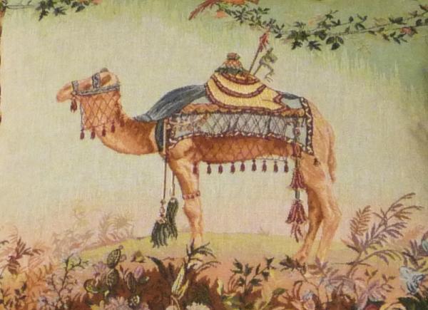 Camel 8823
