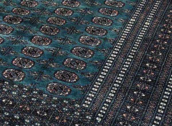 Pakistani Bukhara 9645